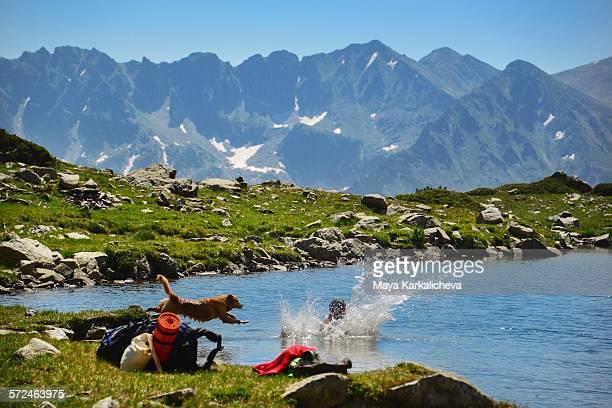 Dog jumping into a mountain lake