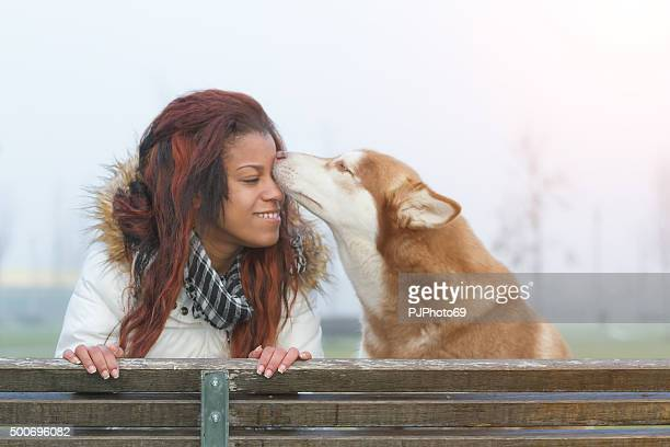 dog kissing a young woman - pjphoto69 stock pictures, royalty-free photos & images