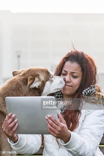 cão beijar uma jovem mulher com tablet - pjphoto69 imagens e fotografias de stock
