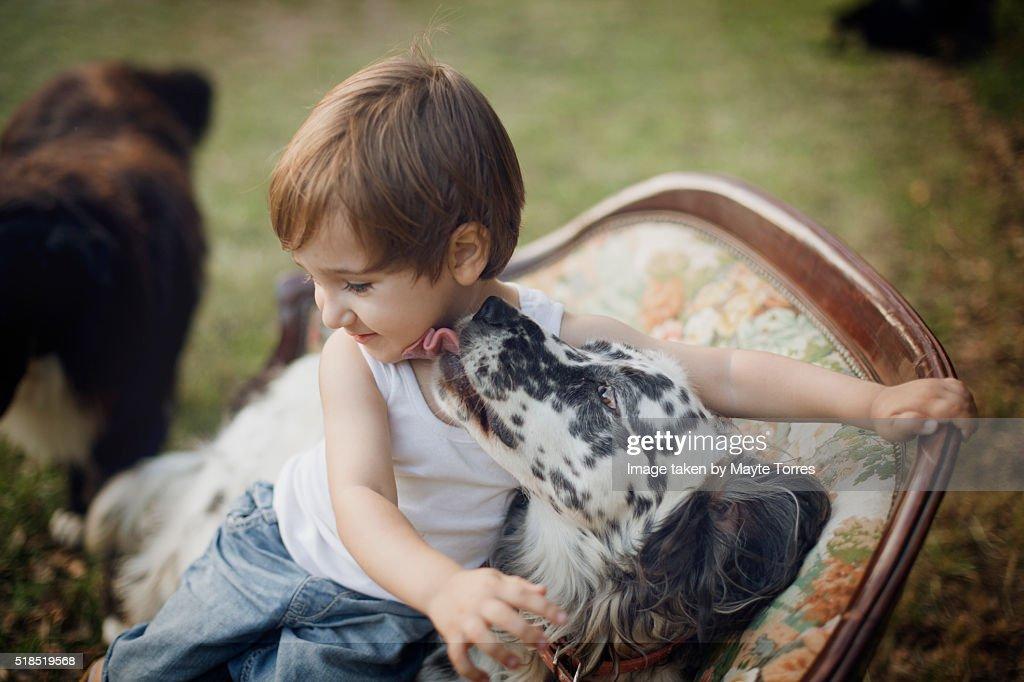 Dog kissing boy : Stock Photo