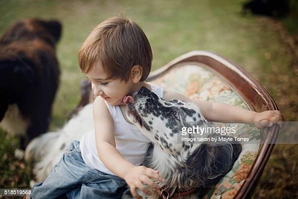 Dog kissing boy