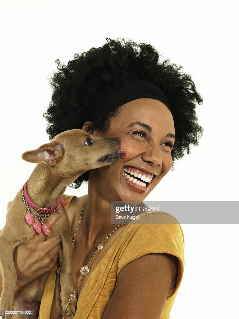 Dog kissing young woman, close-up : Stock Photo