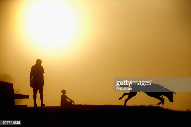 A dog leaps in the grass on the summit of Mt Eden as the sun struggles to shine through a blanket of fog over Auckland City on May 4 2016 in Auckland...