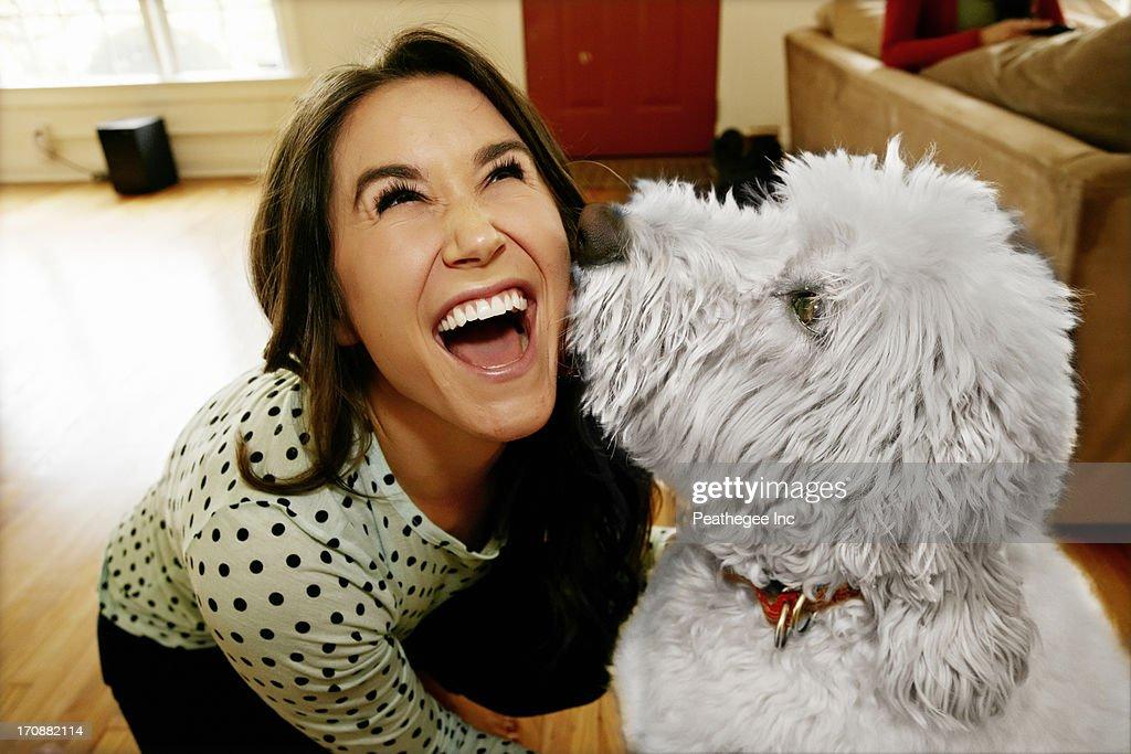 Dog licking Caucasian woman's face : Stock Photo