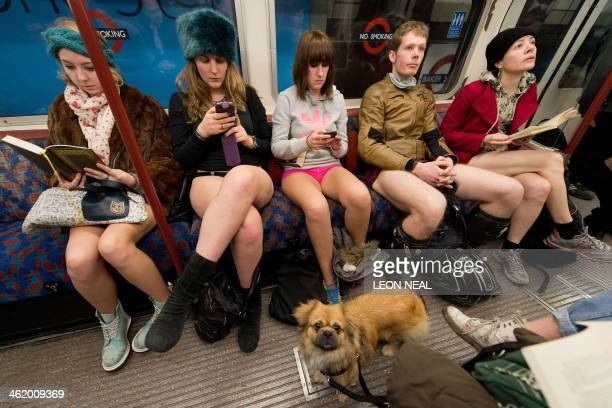 A dog looks on as participants in the 13th annual International No Pants Subway Ride travel on a London underground train in London on January 12...
