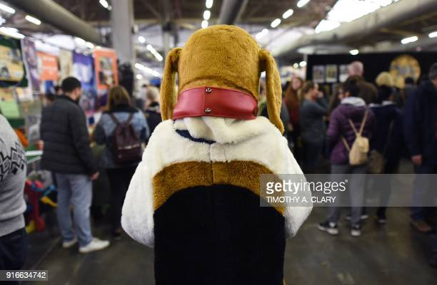 A dog mascot is seen during the 9th AKC Meet The Breeds on February 10 2018 in New York at the 142th Annual Westminster Kennel Club Dog Show / AFP...