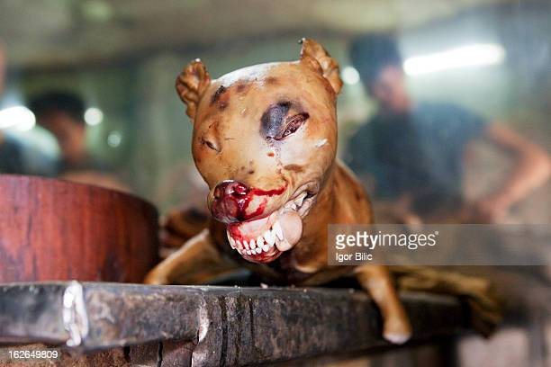 Dog meat is consumed more commonly in the northern part of Vietnam than in the south, and can be found in special restaurants which specifically...