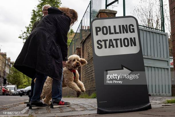 Dog meets its owner outside a polling station at Walnut Tree Walk Primary School on May 06, 2021 in London, England. The London mayoral election...