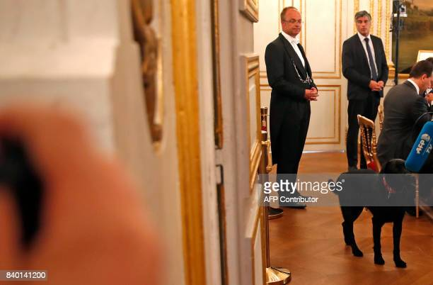 A dog named Nemo adopted few days before by the French presidential couple from the SPA animal protection society walks in the room where the first...
