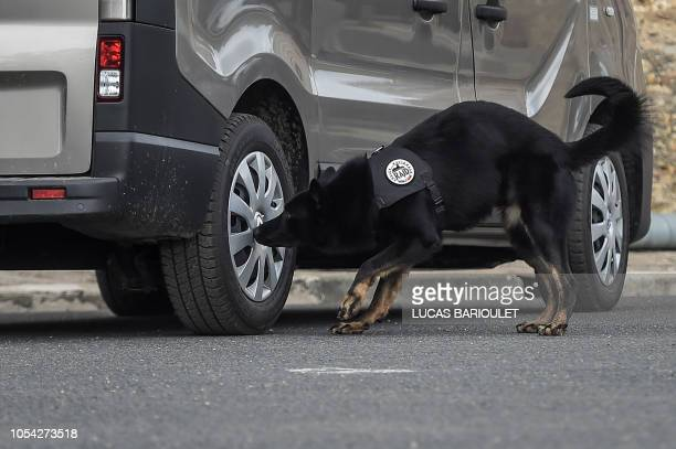 A dog of the Research Assistance Intervention Deterrence Police Unit is seen during the visit of French Interior Minister in the headquarters the...