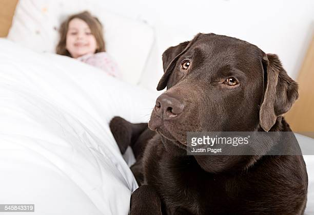 Dog on Childs Bed