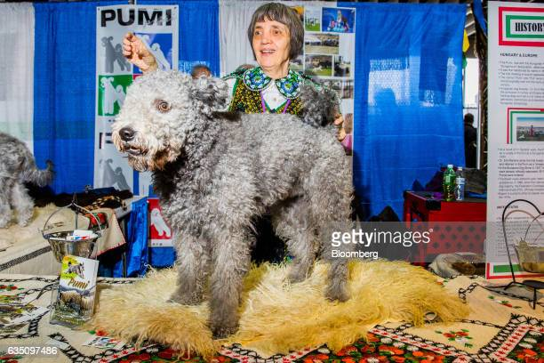 A dog owner and her Pumi dog stand for a photograph during the annual Meet the Breed event ahead of the 141st Westminster Kennel Club Dog Show in New...
