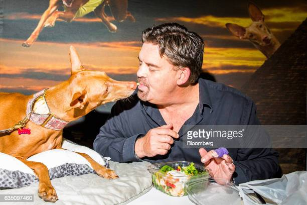 A dog owner and his Pharoh Hound dog share a vegetable during the annual Meet the Breed event ahead of the 141st Westminster Kennel Club Dog Show in...