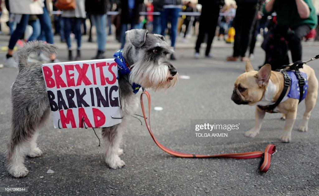BRITAIN-EU-POLITICS-BREXIT : Foto jornalística