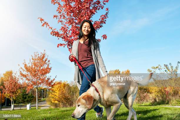 Dog ownership is connected to good health