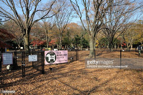Dog Park in Yoyogi park