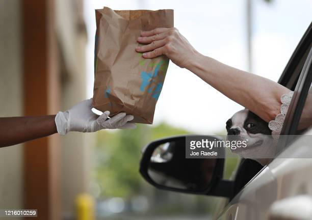 A dog peeks out as a Taco Bell employee delivers an order to a customer at the driveup window of the restaurant on March 31 2020 in Hollywood Florida...