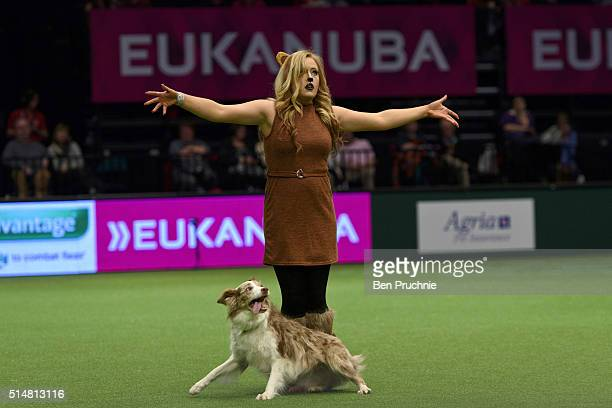 A dog performs with its owner during the second day of Crufts Dog Show on March 11 2016 in Birmingham England First held in 1891 Crufts is said to be...