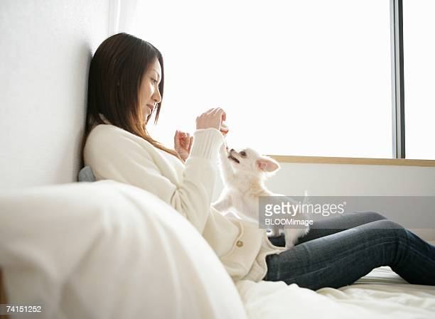 Dog playing on Japanese woman 's  foot