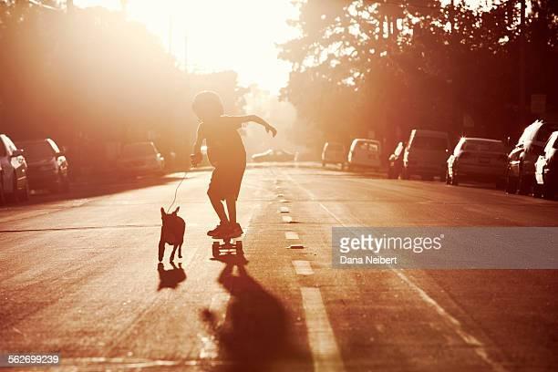 Dog pulling boy on skateboard