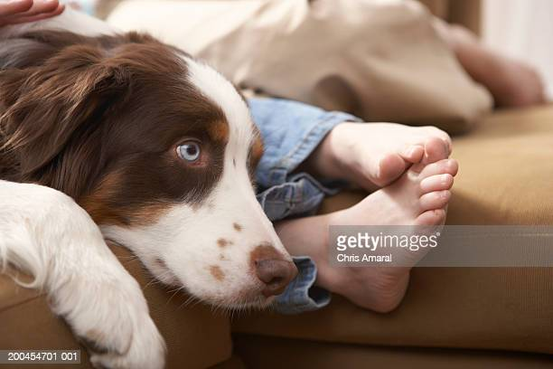 Dog relaxing on sofa with girl (8-10) and woman