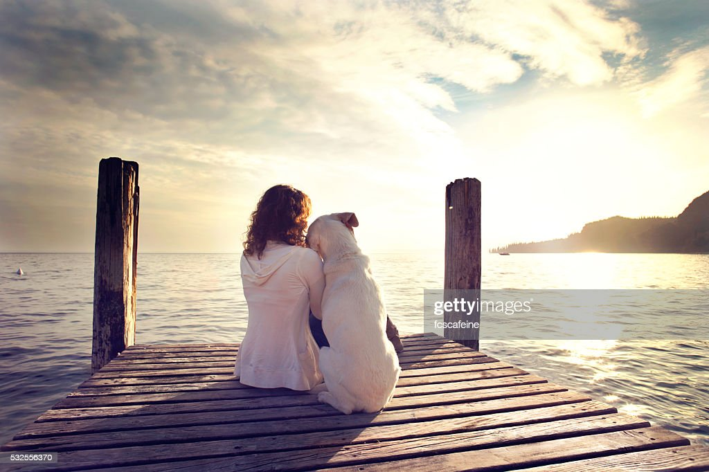 dog rests gently on his master's shoulder while looking view : Stock Photo
