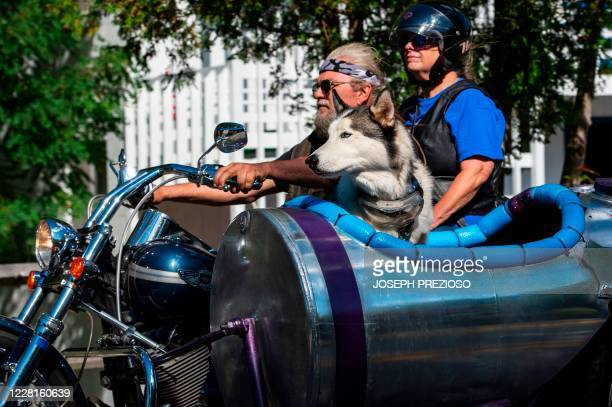 Dog rides along in a side car during the 97th annual Laconia Bike Week in Laconia, New Hampshire on August 22, 2020. - Bike week dates back to 1916...