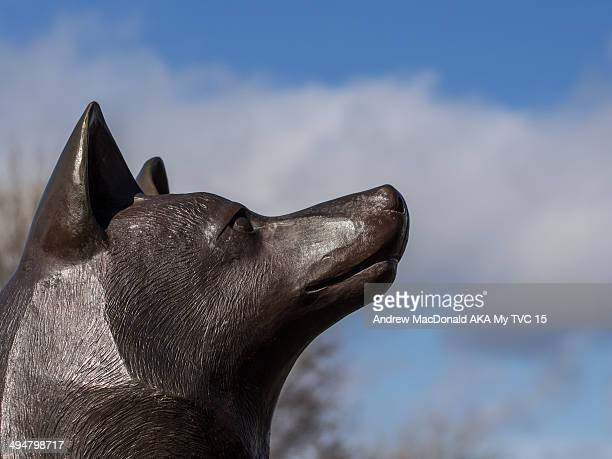 dog sculpture - peterborough ontario stock photos and pictures