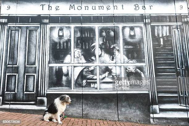 A dog seats outside The Monument Bar in Cobh center On Thursday 29 December 2016 in Cobh Cork Ireland
