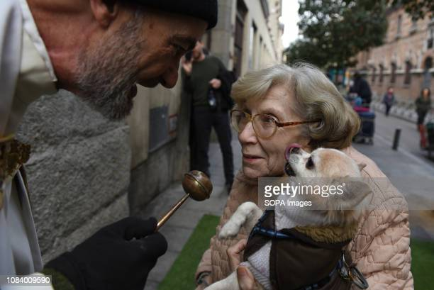 A dog seen reacting to the priest blessing it during Saint Anthony's day in Madrid During Saint Anthonys day hundreds of people bring their pets to...