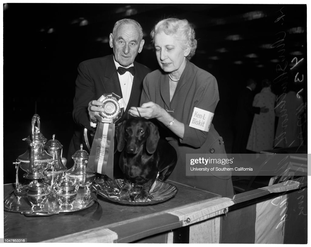 Dog show at Pan Pacific, 1955 : News Photo