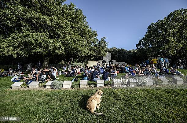 Dog sits in front of people visiting the Anzac soldiers cemetery near the Anzac cove during the ceremony celebrating the 99th anniversary of the...