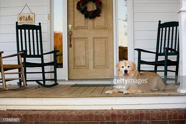 Dog sitting on porch with rocking chairs near the front door