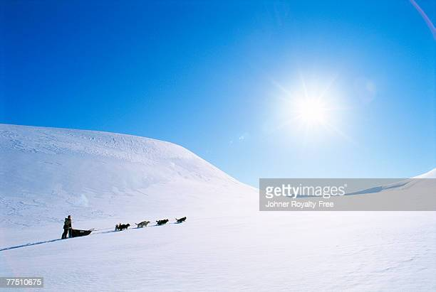 A dog sledge in the mountains.