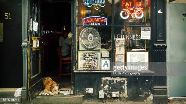 Dog sleeping at entrance of old-fashioned bar near the Bowery, in Manhattan, New York City