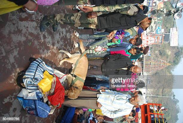 Dog squad and bomb disposal squad checking luggage of tourists at Har Ki Pauri on the first day of Ardh Kumbh 2016 fair on January 14 2016 in...