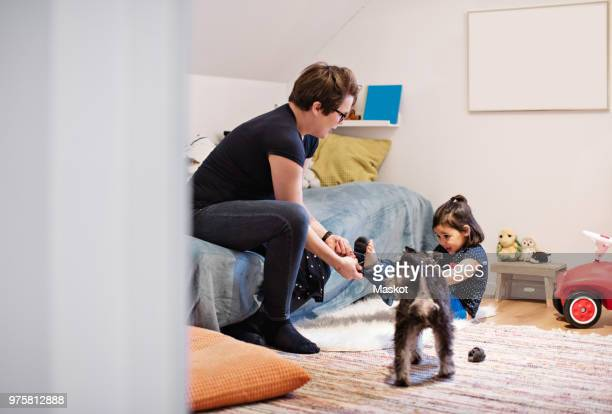 dog standing by mother undressing daughter in bedroom at home - little girl taking off clothes stock photos and pictures