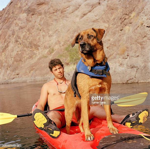 Dog standing on kayak in front of kayaker