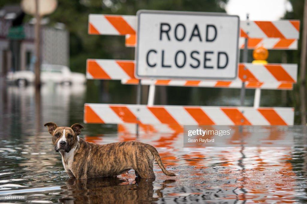 Flooding Inundates South Carolina Nearly 2 Weeks After Hurricane Florence Struck : News Photo