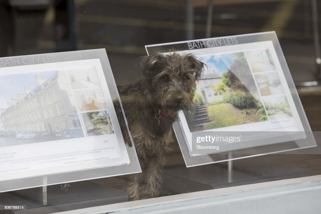 A dog stands in the window of an estate agent in Bath, U.K. on Monday, Aug. 21, 2017. U.K. property prices stagnated in July as a slump in London values spread to neighboring areas, according to theRoyal Institution of Chartered Surveyors. Photographer: Jason Alden/Bloomberg via Getty Images