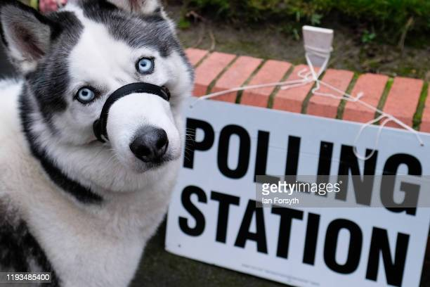 A dog stands next to a polling station sign as voters in Hartlepool head to the polls during polling day for the 2019 general election on December 12...