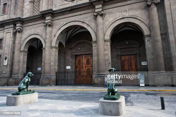 Dog statues in front oh the Santa Ana Cathedral; Las Palmas; Gran Canaria; Canary Iislands; Spain.