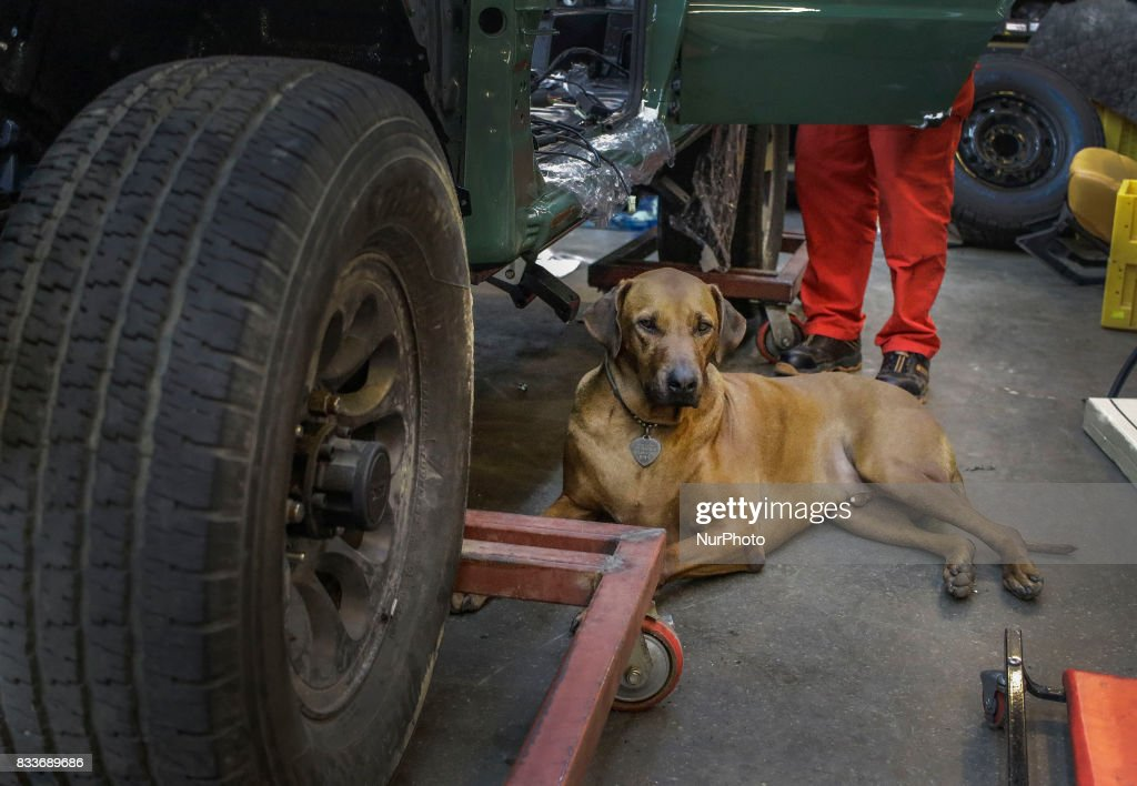 """Dog stay at rebuilding vehicle side at mohenic garage in Paju, South Korea. A 20-year-old beat up Hyundai SUV isn't anyone's idea of a dream car. But used Hyundai Gallopers, priced between $2,000 to $3,000 at second-hand car markets, are making a comeback , reborn as upwards $80,000 luxury vehicles at the hand of former furniture designer Henie Kim. Kim is now the CEO of Mohenic Garages, a car rebuilding company based in Paju has transformed the boxy classic into one of South Korea's most highly-desired cars. """"As a former designer, I wanted make everything perfect."""" The remade """"Mohenic G"""", as they're known, take their design cues from the 1990s and come in a variety of custom colors from """"mint racing green"""" to """"midnight cerulean blue"""". Demand for the """"Mohenic G"""" has steadily risen, and the waitlist is long. Since 2013, only 43 cars have been rebuilt and 48 customers are on a waiting list. Production is slow though since the company expanded, they're able to produce 30 cars a year, or about 2 cars a month. A team of two dozen workers transform each car in a meticulous process that includes prying the car cabin from its frame, sanding, removing corrosive substances, polishing and painting."""