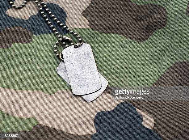 dog tags on camouflage - military dog tags stock pictures, royalty-free photos & images