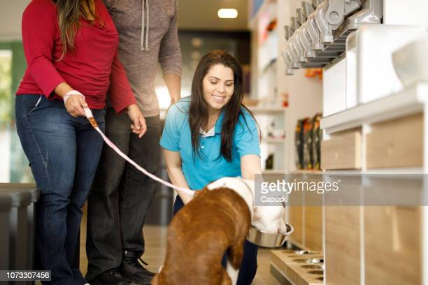dog tasting pet food at pet shop - pet equipment stock pictures, royalty-free photos & images