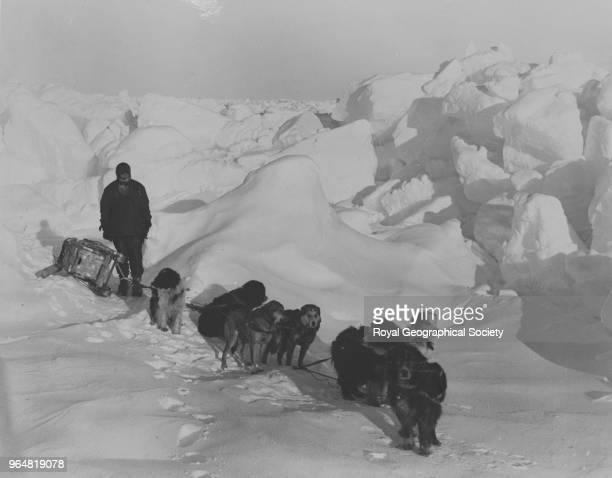 Dog team being exercised over pressure ridge Antarctica 1914 Imperial TransAntarctic Expedition 19141916