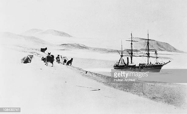 A dog team near the icebound British National Antarctic Expedition ship RRS Discovery circa 1903 The expedition was led by Robert Falcon Scott and...