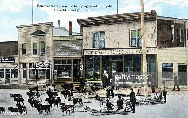 Dog teams bring a half million dollars worth of gold to Seward Alaska in this postcard from Seattle Washington circa 1910