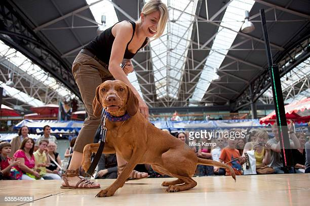 Dog tricks at Paw Pageant dog show at Spitalfields Market London Local people enter their dogs into the Shoreditch Unbound Festival Dog Show to win...