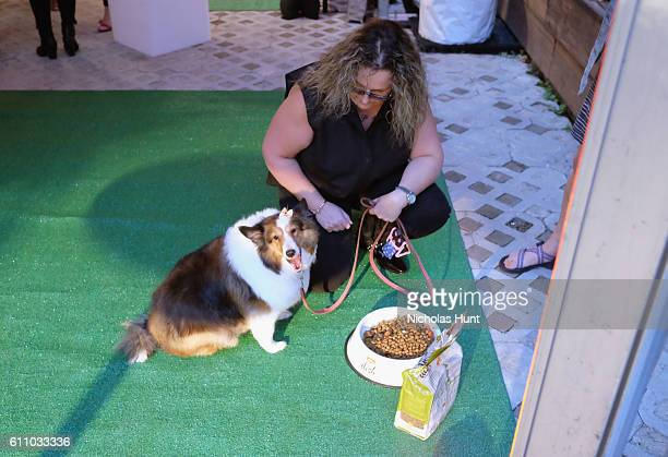 Dog tries Rachael Ray's Nutrish DISH during the celebration of the launch of Rachael Ray's Nutrish DISH with a Puppy Party on September 28, 2016 in...